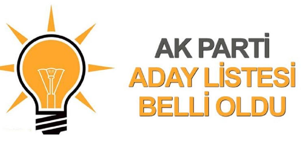 AK Parti milletvekilini aday göstermedi