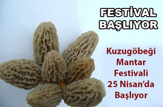 Kuzugöbeği Mantar Festivali 25 Nisan'da
