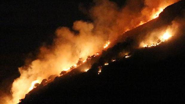 Kamp yapalım derken ormanı yaktılar