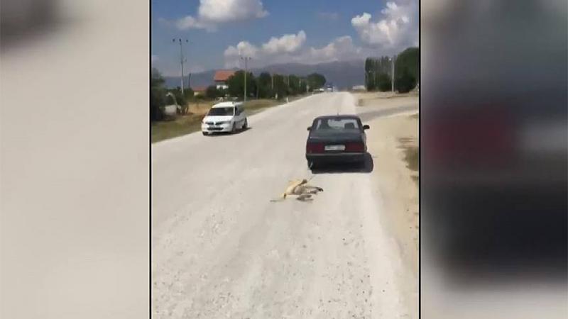 Köpeği otomobiliyle sürükleyen kişiye para cezası verildi