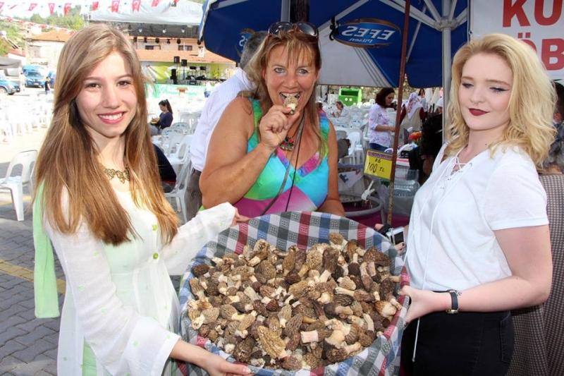 Kuzugöbeği Mantar Festivali Başlıyor