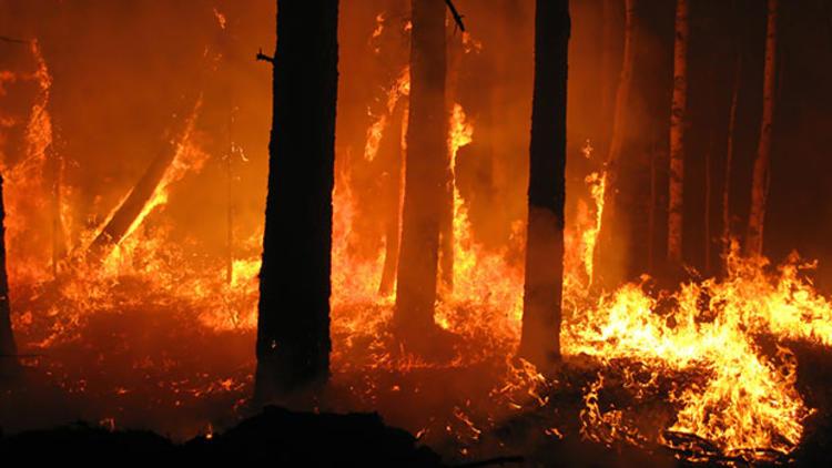 Yakabağ\'daki yangın büyüyor
