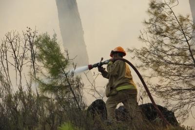 2020 Yılında 328 Yangında 813 Hektar Alan Yandı