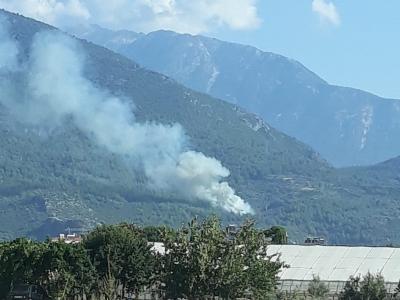 Fethiye merkezde başlayan yangın korkuttu
