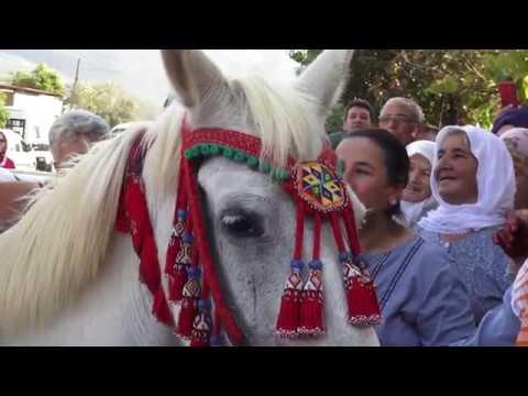 Damat Gelini At Sırtında Getirdi / Groom Bride on Horse